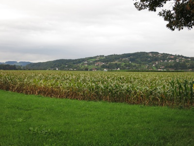 Call for Papers: Austrian Journal of Agricultural Economics and Rural Studies