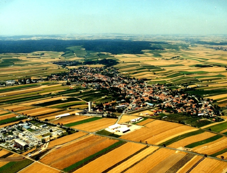 Agrarland NÖ 1918-1995