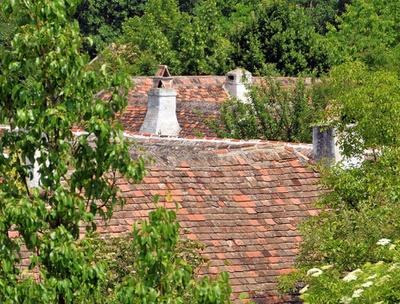 Das Dorf als natural-soziales System