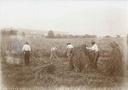 Landarbeit organisieren