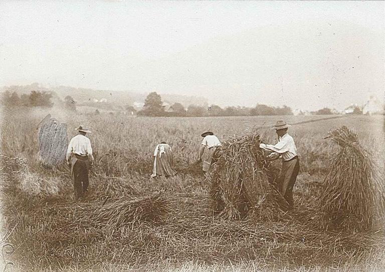 Organising Agricultural Labour. Administrative Struggles in Interwar Austria