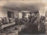 Surviving Times of Crises 1914–1950: Focus Nutrition